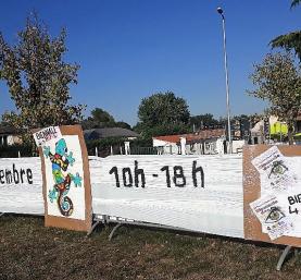 biennale (16)