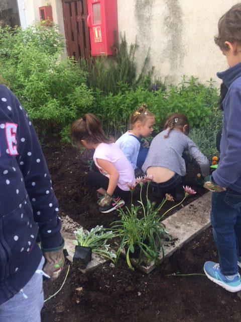école jardinage (2)