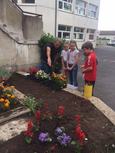 école jardinage (4)