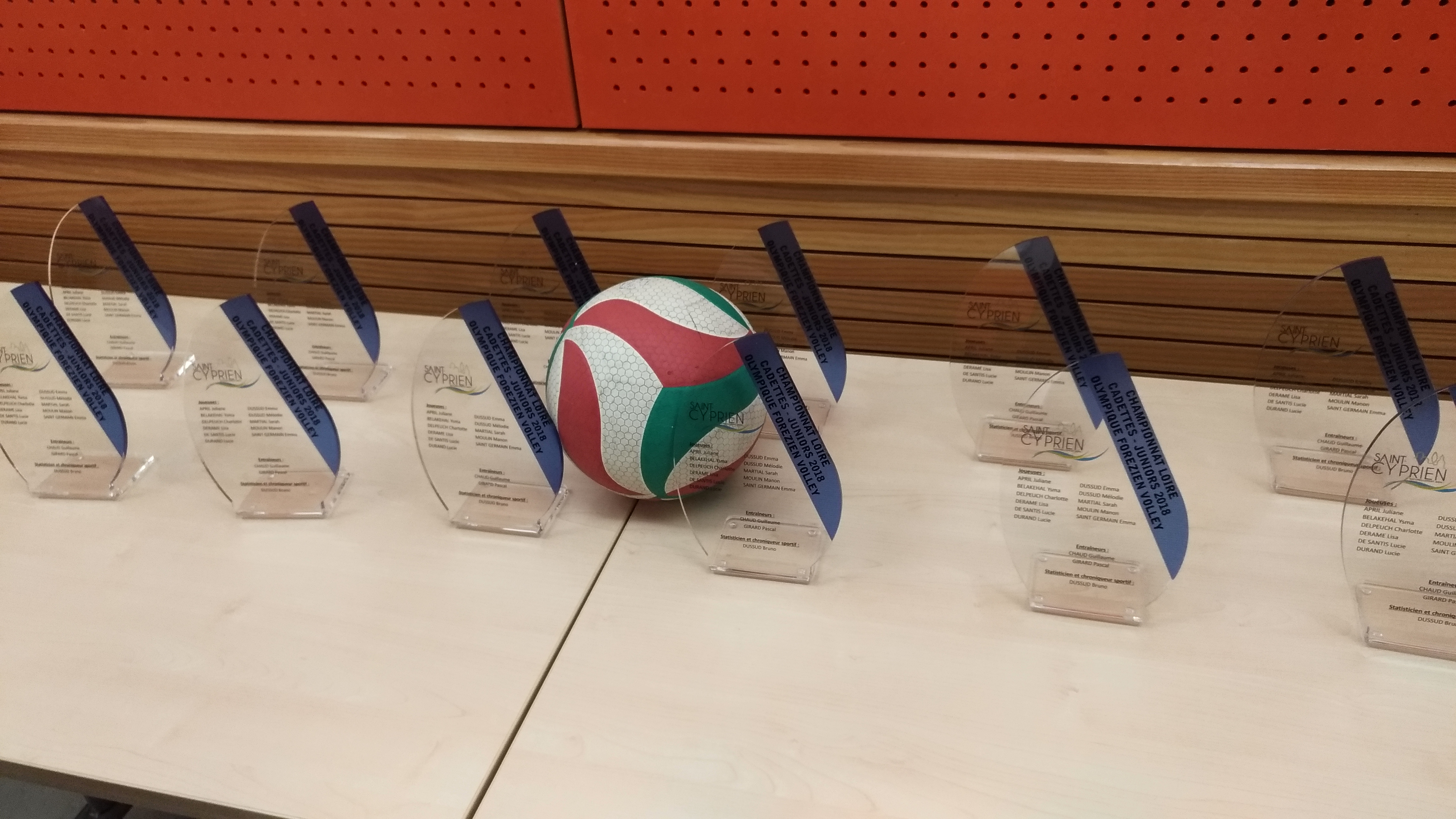 trophées volley (9)