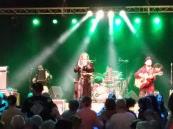 Retour en images et en musique sur le 20ème Festival des Nuits Celtiques