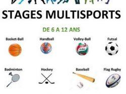 Nouveauté : Stages multi-sports proposés par l'OF Volley