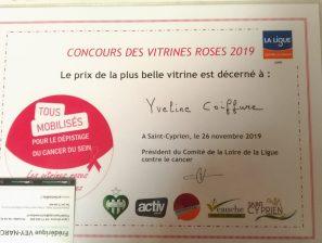Octobre Rose : soirée de remise des prix à Saint-Cyprien