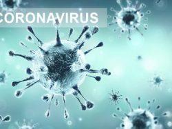 [Coronavirus – COVID19] – Arrêté relatif à l'interdiction d'accès aux espaces naturels, touristiques et de regroupements