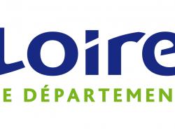 MDPH Loire – Vos droits