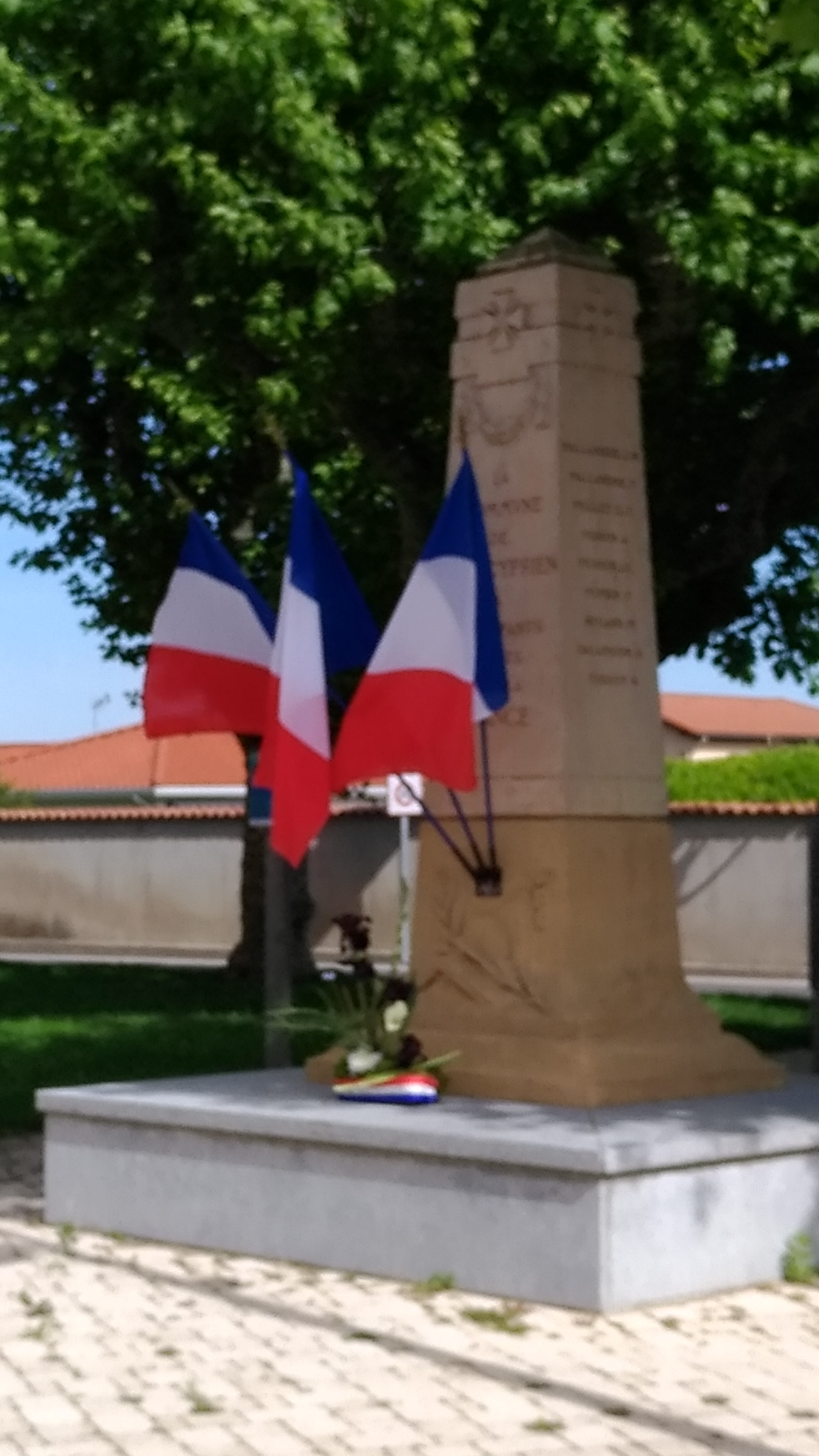 commemoration 8 mai 2020 (6)