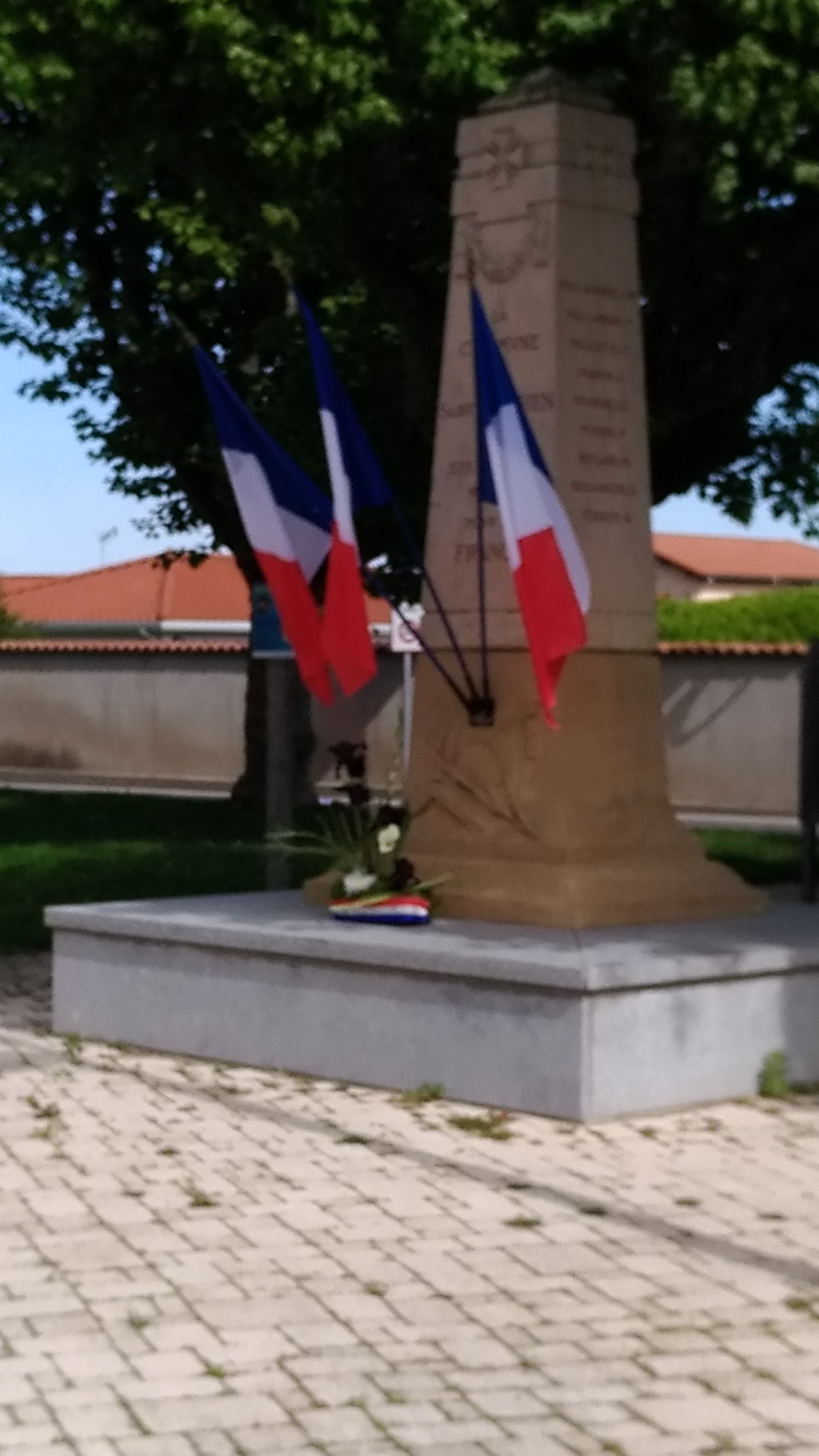 commemoration 8 mai 2020 (7)