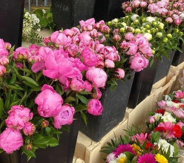 fleuriste du marché