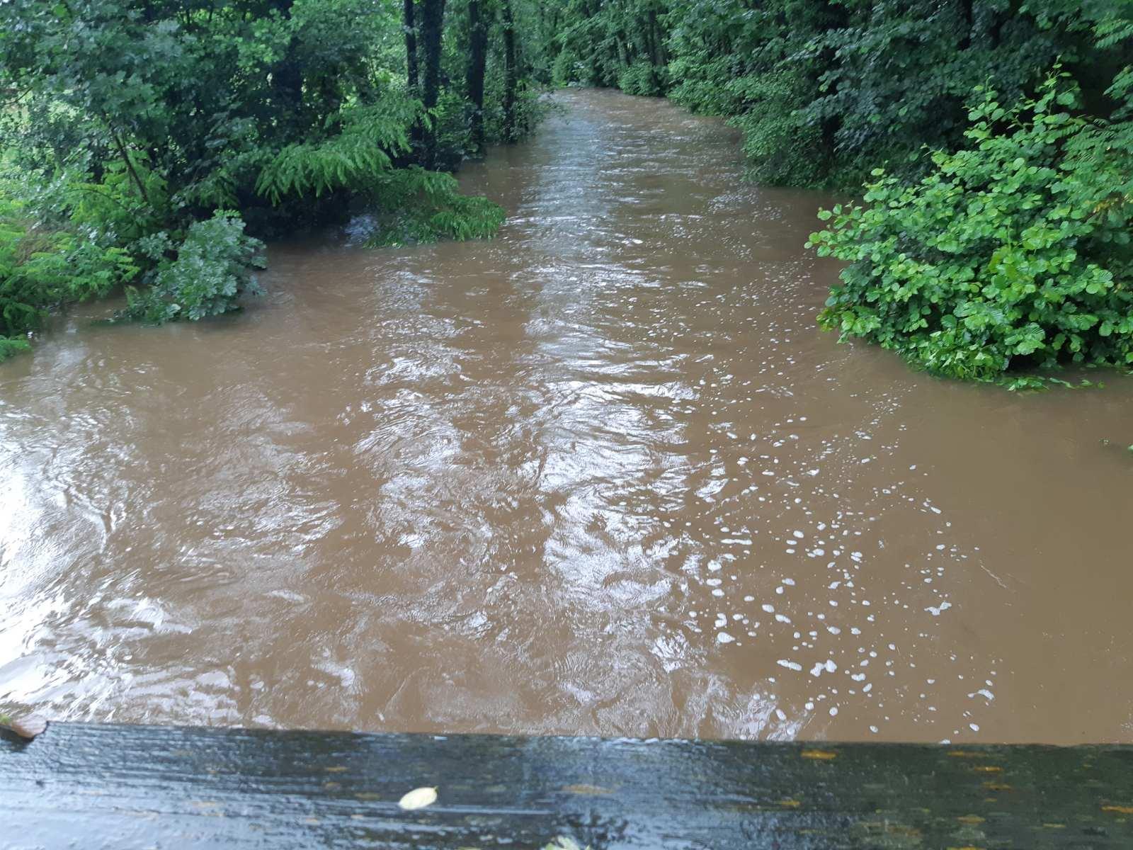 loire fleuve (1)