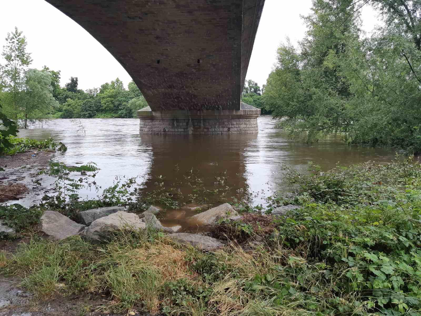 loire fleuve (4)