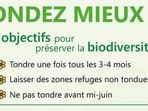 Tondez mieux tout en préservant la biodiversité !
